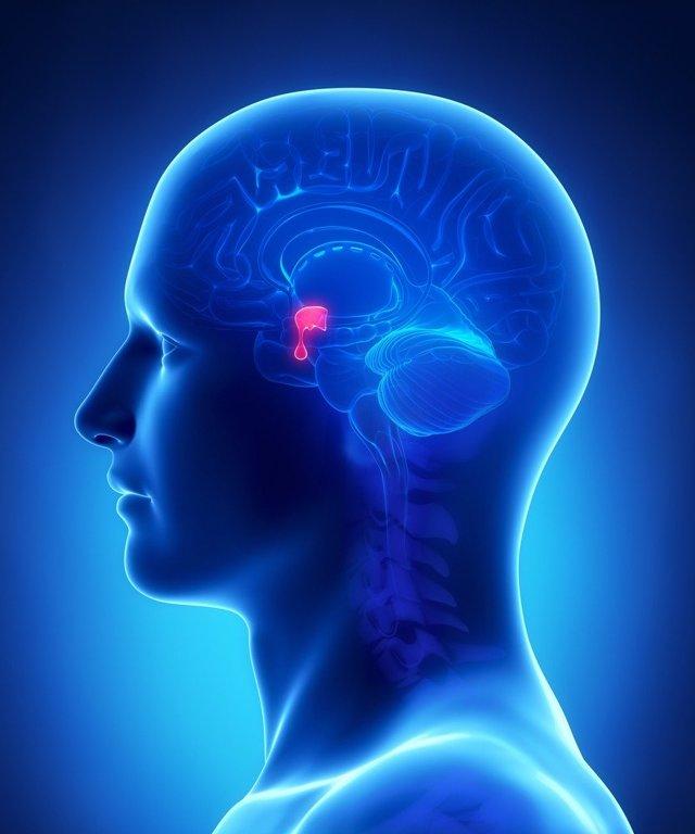 Akromegalie - Vše o zdraví
