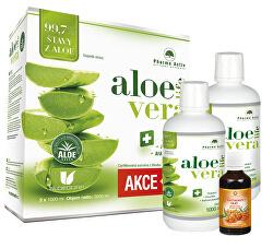 Aloe vera - Vše o zdraví