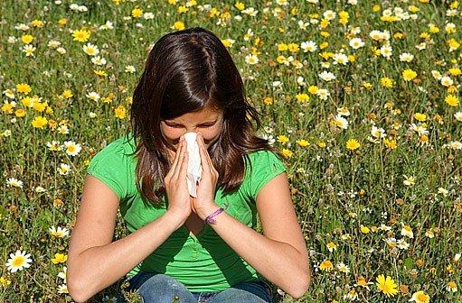 Alergen - Vše o zdraví