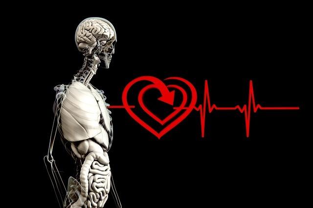 Bušení srdce - Vše o zdraví