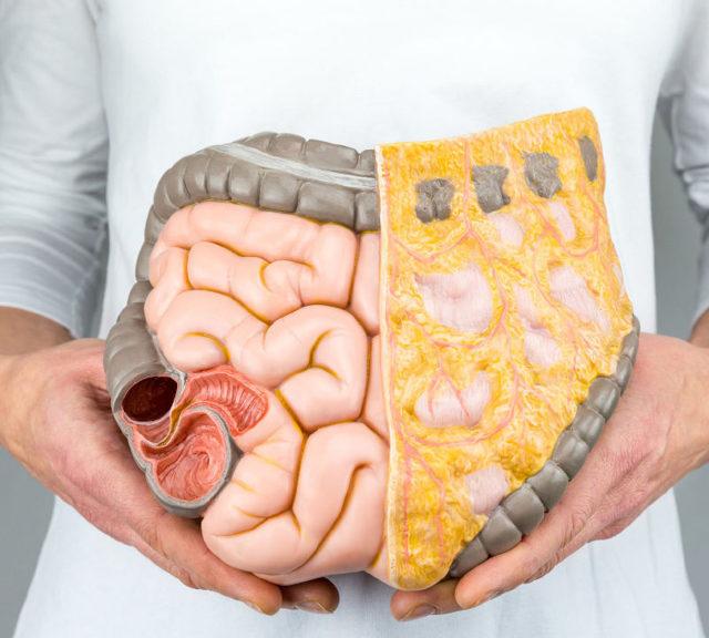 Bakterie - Vše o zdraví