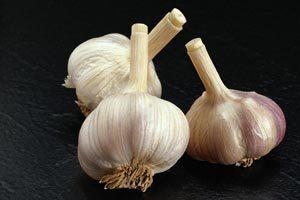 Česnek - Vše o zdraví