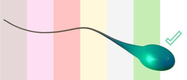 Barva spermatu - Vše o zdraví