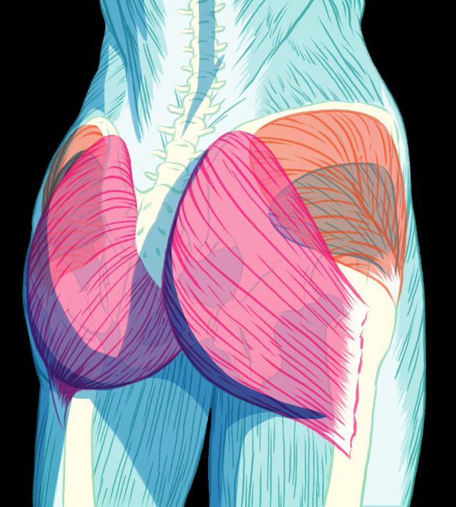 Bolest zadku - Vše o zdraví