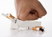 Ct plic - Vše o zdraví