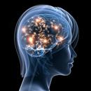 Epilepsie - Vše o zdraví