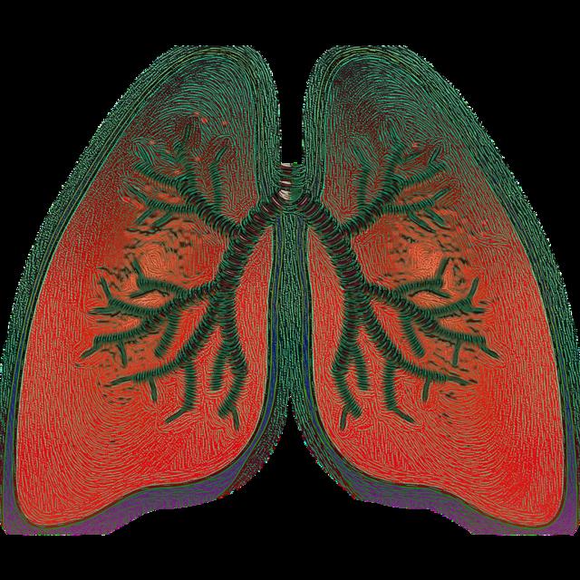 Dezinfekce - Vše o zdraví