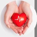Bolesti srdce - Vše o zdraví