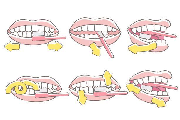 Čištění zubů - Vše o zdraví