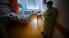 Česká lékařská komora (ČLK) – vše o zdraví