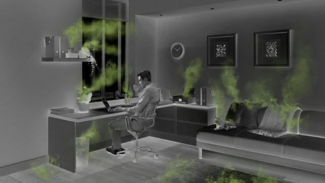 Domácí prach, roztoči – vše o zdraví