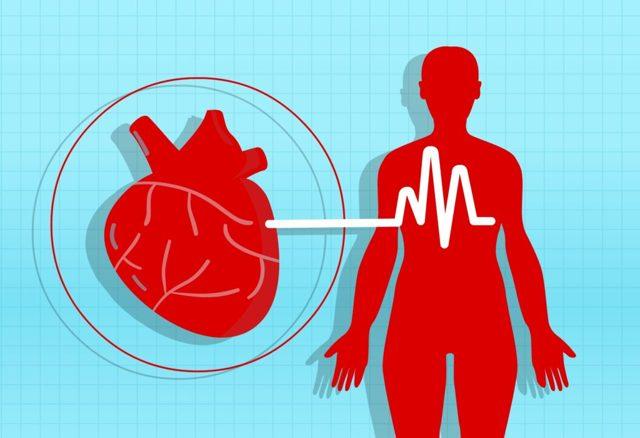 Vysoký krevní tlak – vše o zdraví