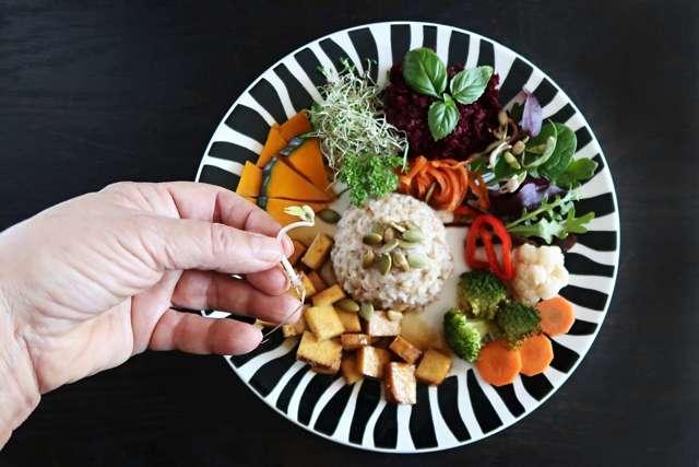 Vegetariánství versus veganství Aneb co jíš, když nic nejíš? – vše o zdraví