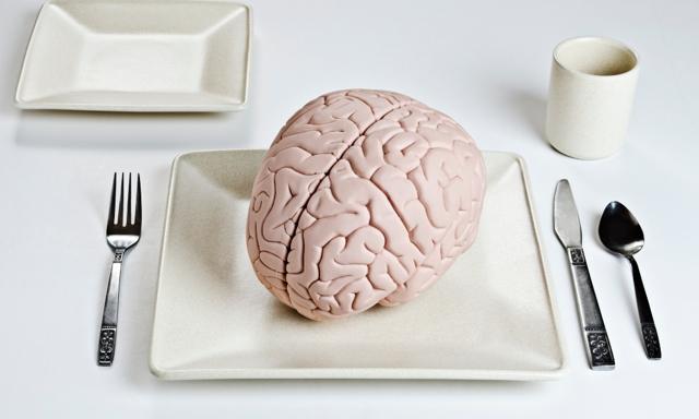 Mozek - Vše o zdraví