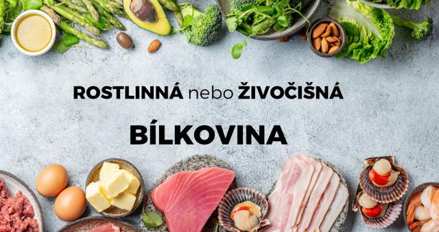 Protein - Vše o zdraví