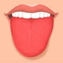 Onemocnění jazyka - Vše o zdraví