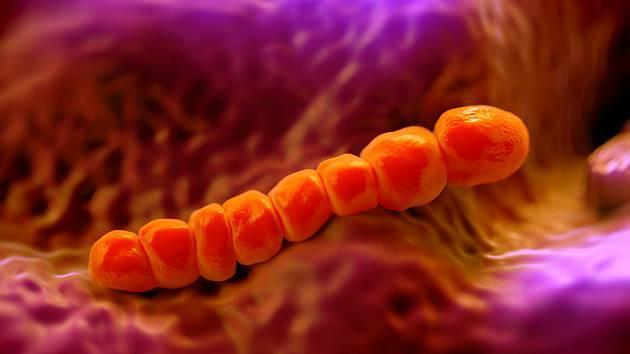 Prevenar 13 nebo synflorix - Vše o zdraví