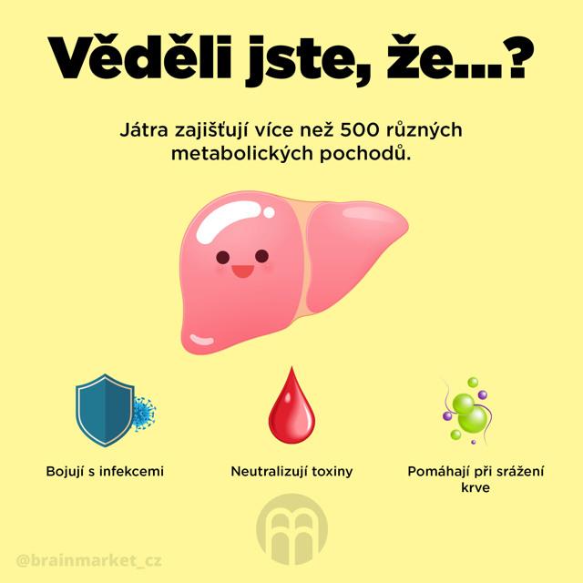 Příznaky poškození jater - Vše o zdraví
