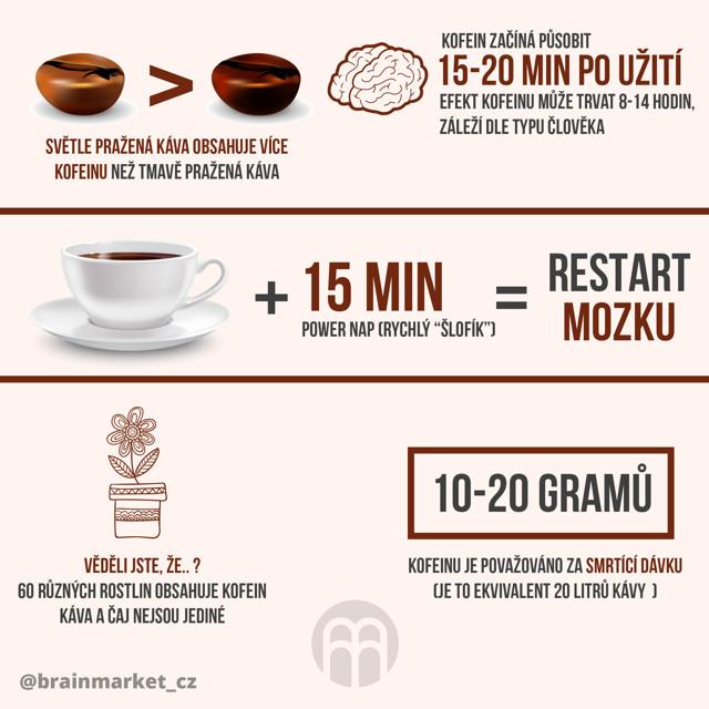 Mozková atrofie - Vše o zdraví